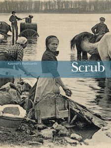 Kasmin's postcards: Scrub book cover